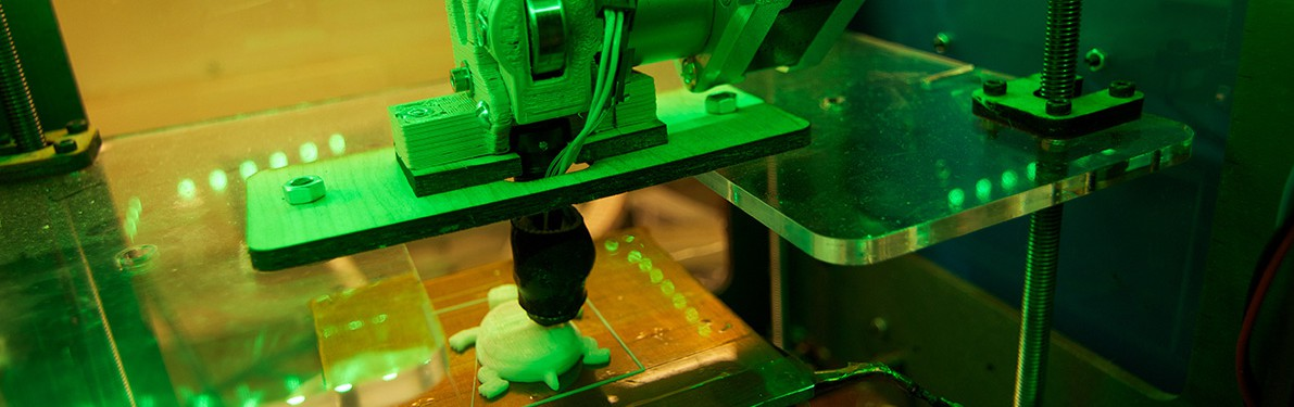 This 3d Printer is currently printing a turtle. http://www.fablabscarolinas.org/