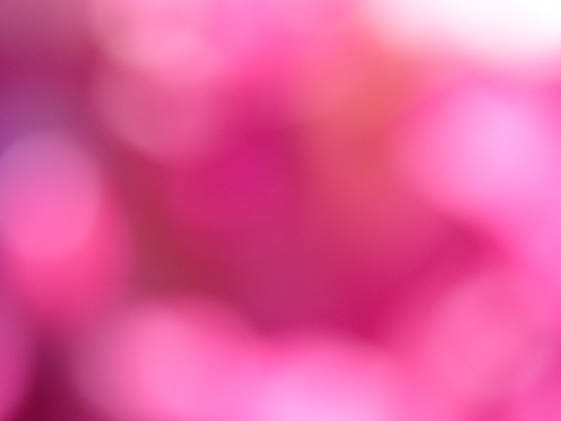 pink-bokeh-background